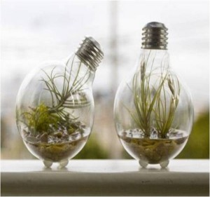Recycled Light Bulbs Decoration Idea