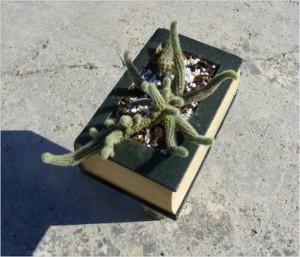 Recycling Old Book Handmade Planter Idea