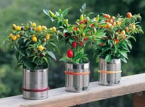 DIY Repurpose Tin Can Flower Vase