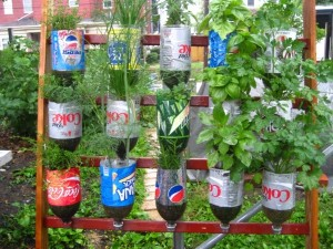 Recycled Plastic Bottles Mini Gardening