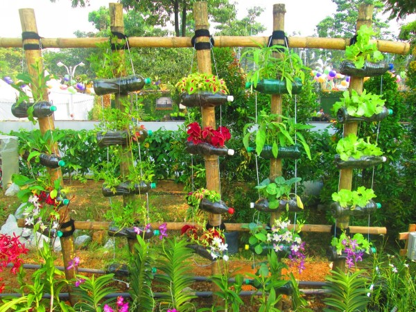 Recycling Plastic Bottles Gardening Idea