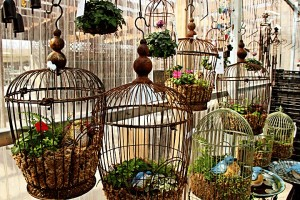 Repurposed Bird Cages Patio Decor