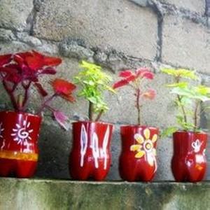 Repurposed Plastic Bottle Half Flower Pots
