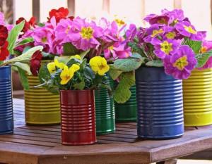 Tin Cans Beautiful Flowers Pot