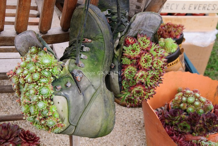 Recycled Shoes Hanging Planters