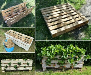 DIY Recycled Wooden Pallet Planter