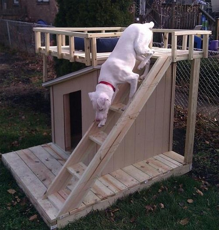 Pallet DIY Dog House