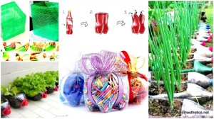 Recycled Plastic Bottles into DIY Projects