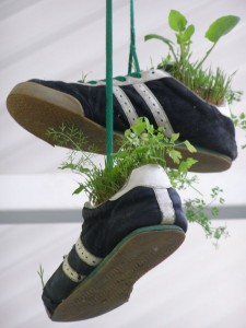 Recycled Shoes Planter Idea