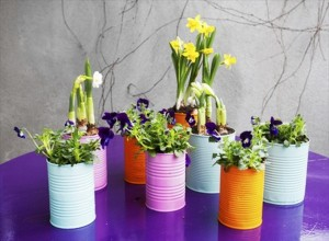 Recycled Tin Cans Flower Pot