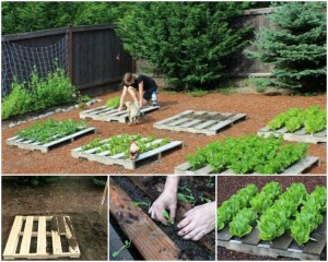 Upcycled Pallet Garden Planters