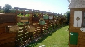Pallet Fence and Planters