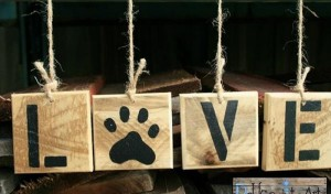Pallet Wind Chimes