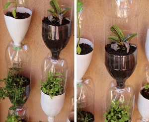 Recycled Plastic Bottle Craft