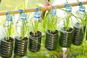 Recycled Plastic Bottles Hanging Planter