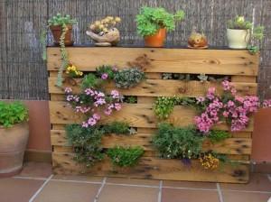 Wooden Pallet Vertical Garden