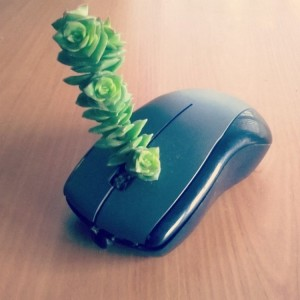 Mouse Upcycled Planter