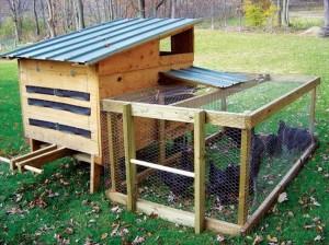 Wooden Pallet Chicken Coop
