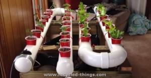 PVC Pipe Garden Ideas
