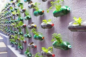 Plastic Bottles Verticle Garden