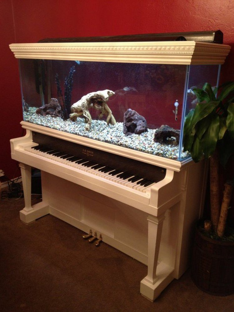 Old Piano Recycled into Beautiful Aquarium