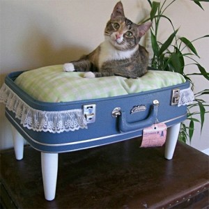 Old Suitcase into Cat Bed