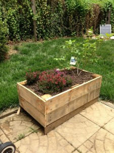 Planter Boxes Made from Wooden Pallets
