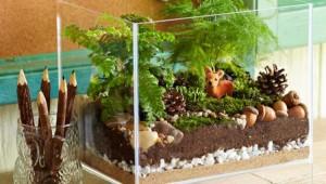 Elegant Terrarium Home Decoration Ideas
