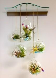 Terrarium Hanging Home Decor Ideas