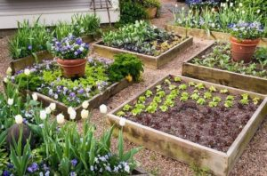 Cozy Pallet Raised Garden