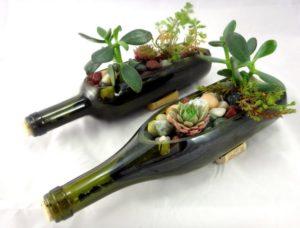 Glass Bottles Botnical Garden for Decor