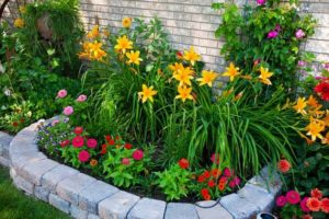 Cheap Flower Bed Ideas