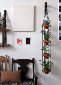 Creative Hanging Plants