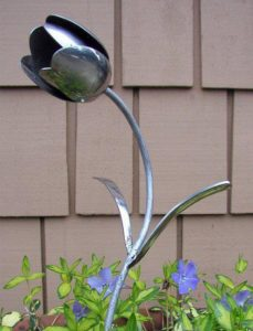 Spoon Tulip