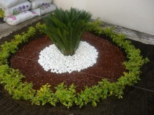 Wonderful Garden Decor Idea