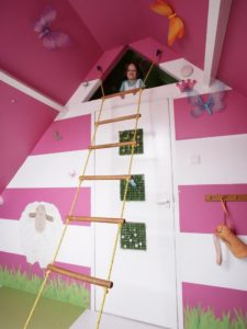 Fun Lookout and Rope Ladder