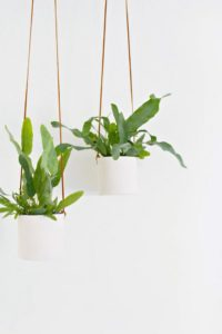 Leather and Clay Hanging Planter