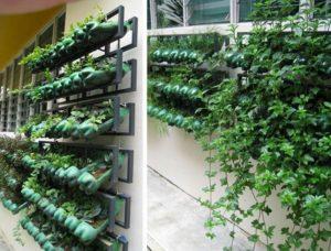 Plastic Bottle Vertical Garden
