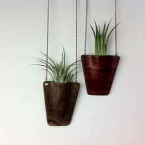 Wooden Air Plant Pendant
