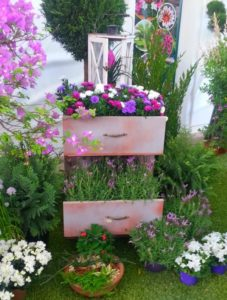 Old Chest of Drawers Cute Garden Planter