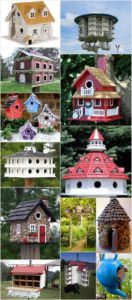 DIY Bird House Projects that Will Attract Them to Your Garden