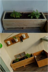 Wood Pallet Raised Garden Bed