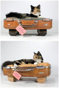 Reused Suitcase Cat Bed