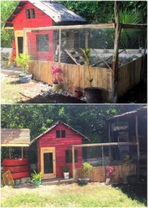 Pallet Chicken Coop and Fence