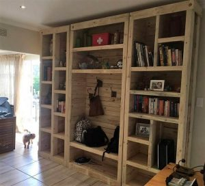 Pallet Cupboard or Books Shelving Unit