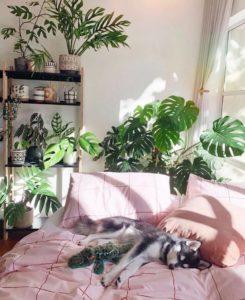 Bohemian Bedroom Decor (18)