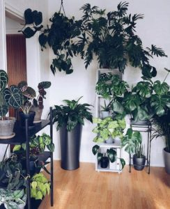 Bohemian Home Interior Decor (20)