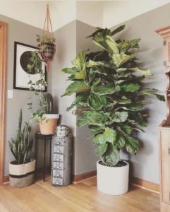 Bohemian Home Interior Decor (31)