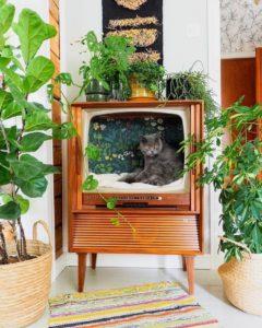 Creative Bohemian Home Decor Design (21)